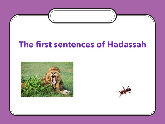 The First Sentences of Hadassah by Lison Schwartz