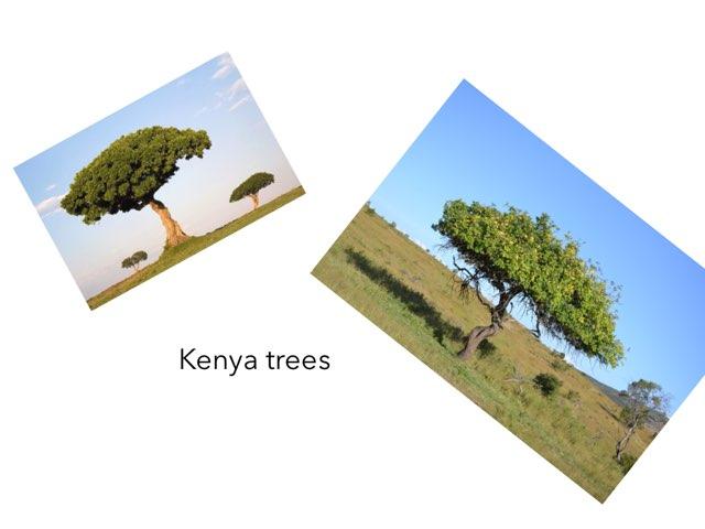 Kenya - Lucie by FarBrook School