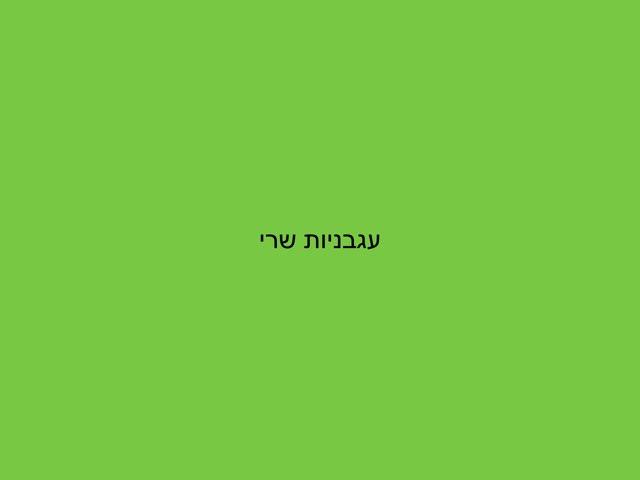 משחק 263 by שלומי לוי