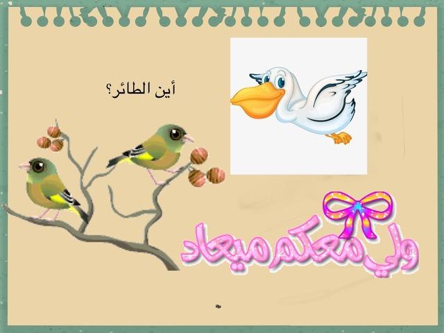 لعبة العصفور by amooon amaaan