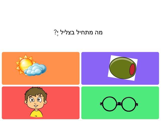 צירה סגול י ח ת ו by Avigail Provisor