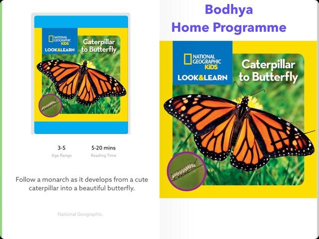 Learning Concepts by Lavanya Sriram