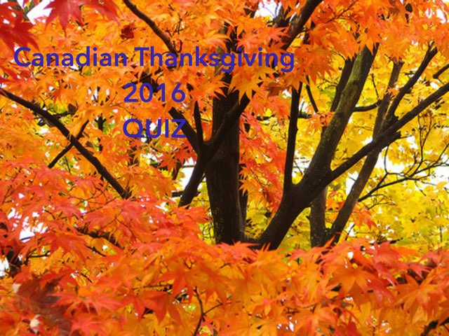 Canadian Thanksgiving Quiz For Canadians by Leslie Henry