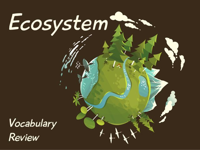 Ecosystem Review by Christy Nichols