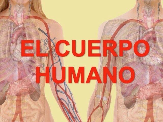 El Cuerpo Humano by Esther Cortés Martínez