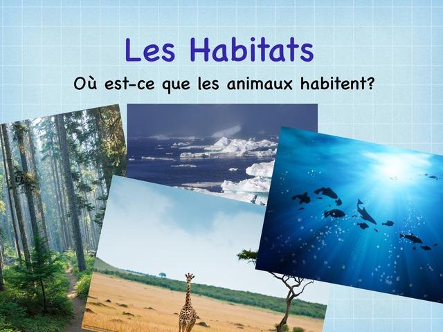 Les Habitats by Dana Larmour-Smith
