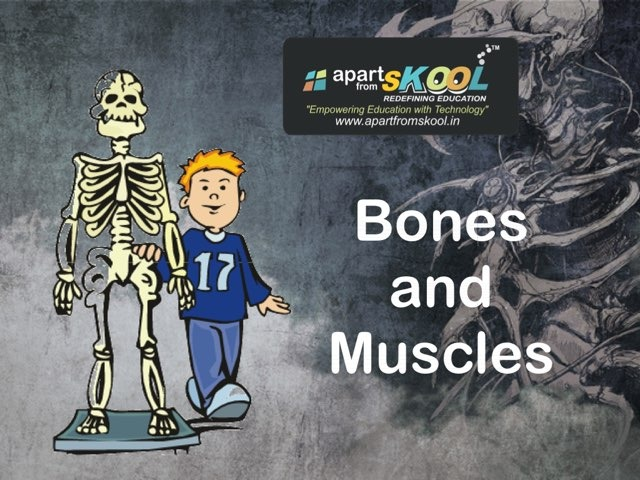 Bones And Muscles by TinyTap creator