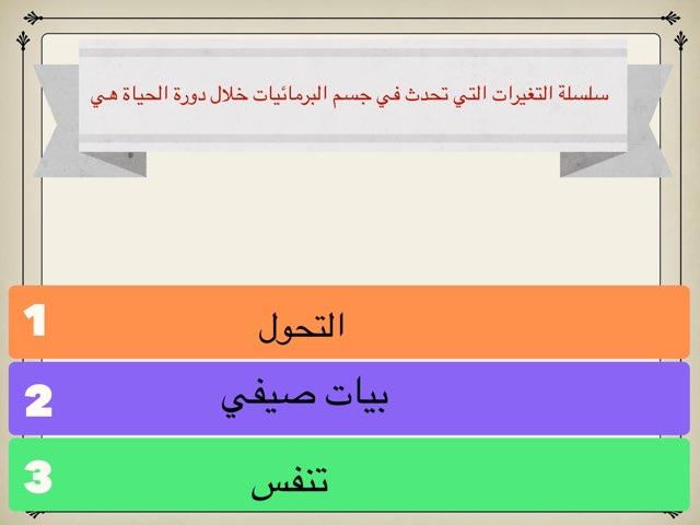 لعبة 44 by Hanan Almutairi