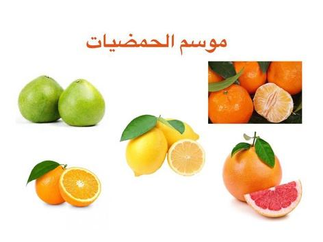 موسم الحمضيات by fatma drawshi
