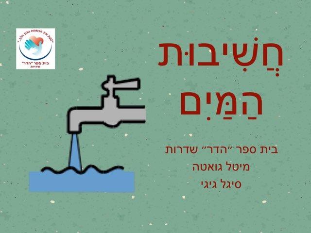 חשיבות המים by Dmeitali Dayan