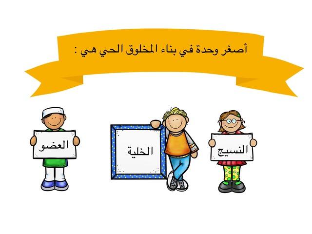 علوم الصف الرابع  by علي الزهراني