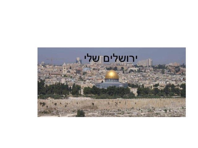 המסע המופלא לירושלים by Dana Cohen