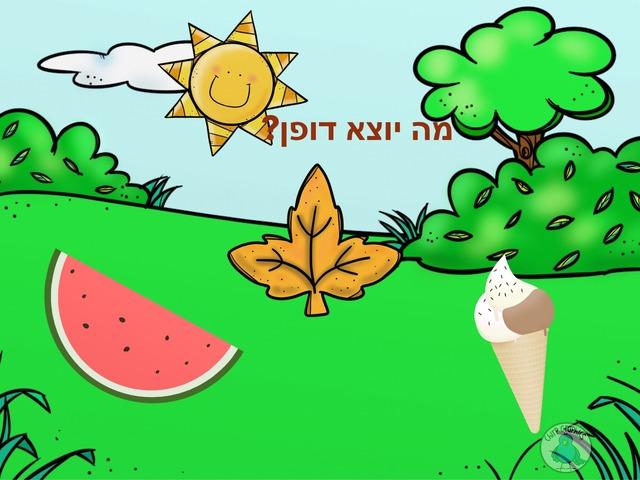 משחק קיץ by amy jolean