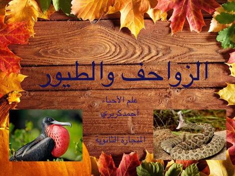 الزواحف والطيور by احمد كريري