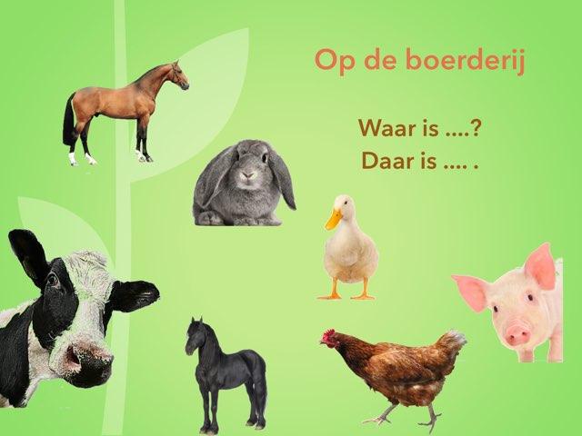 Op de boerderij: Waar is ....? - Daar is ....! by Annemiek Schokker