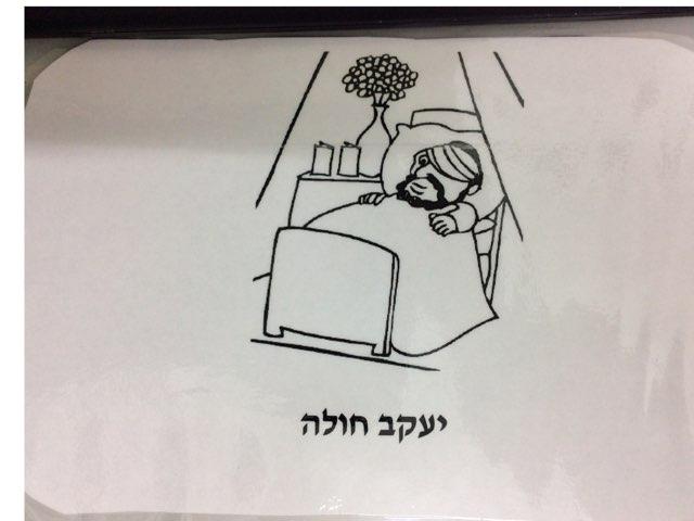 פרשת ויחי בית מצודות by Eliezer Adler