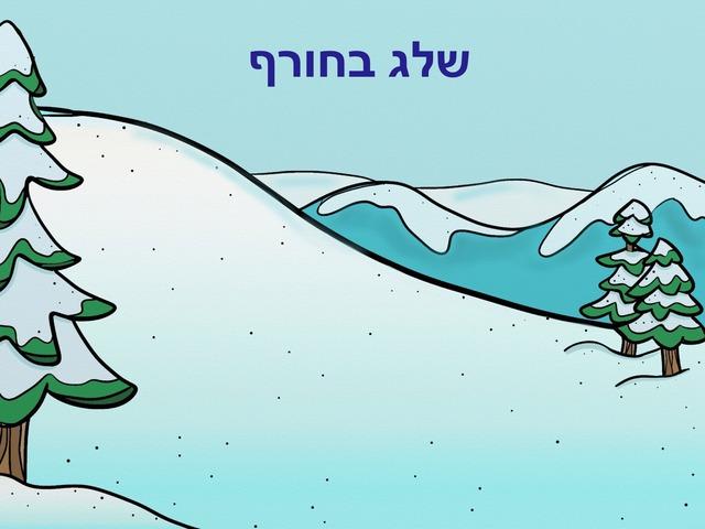 שלג בחורף by Adi Regev Cohen