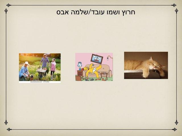 חרוץ ושמו עובד by Tami Yarkoni