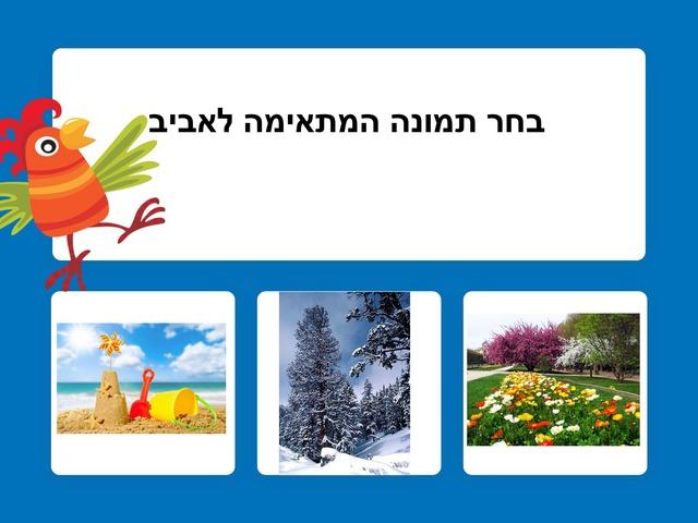 אביב אפי by אפי אהרונוביץ