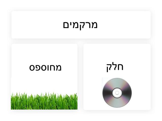 מרקמים by גלית ממן