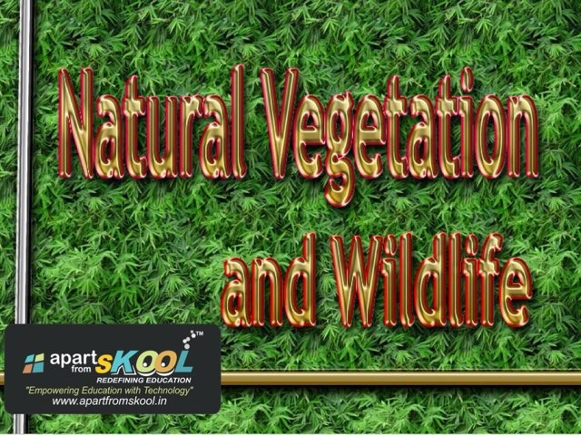 Natural Vegetation And Wildlife by TinyTap creator