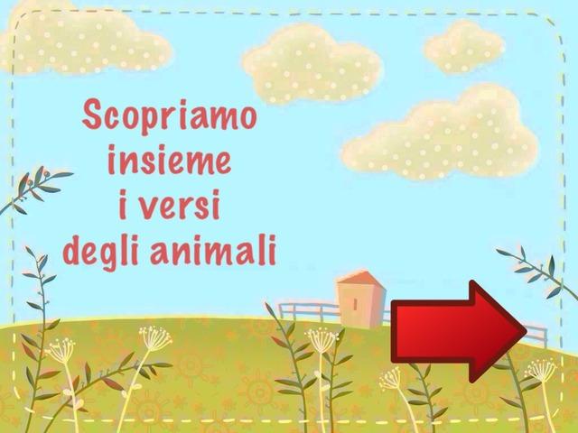 Animali(1) by Coat Onlus