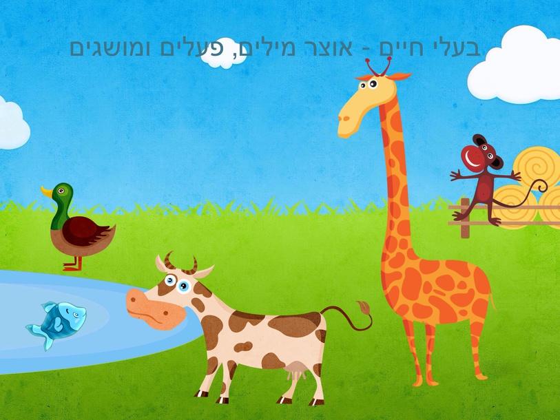 בעלי חיים - אוצר מילים, פעלים ומושגים by Shiri Pinkas