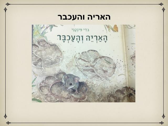 האריה והעכבר by אסיף אסיף