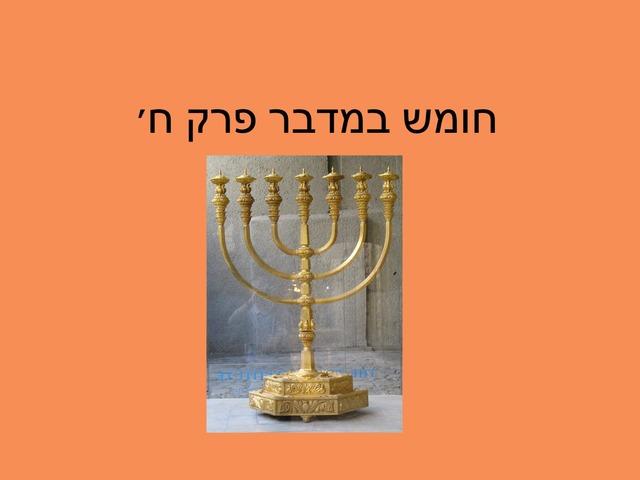 במדבר פרק ח by מכללה תלפיות
