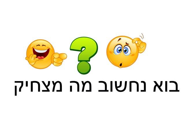 אבסורדים גינה by רים ברברה