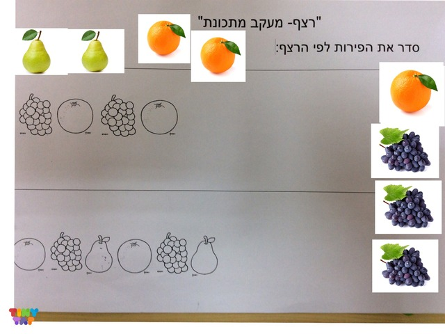 רצף פירות by gan meshi