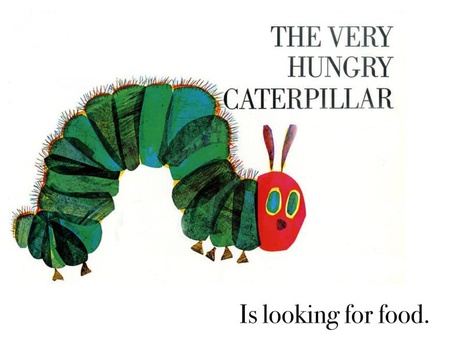 Hungry Caterpillar In On Under by Madonna Nilsen
