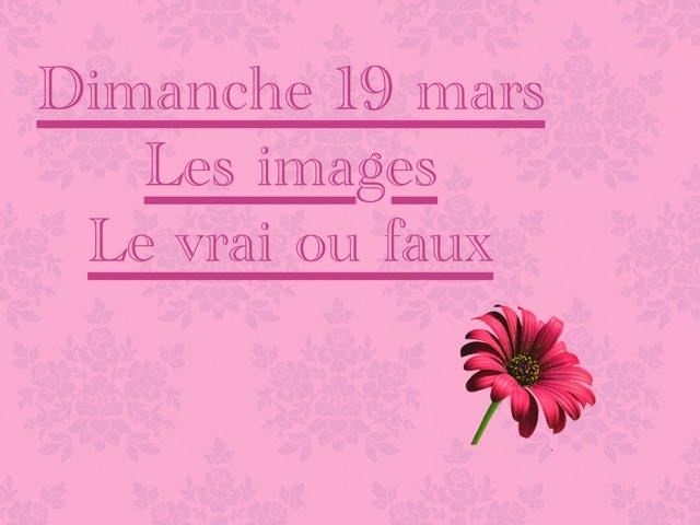 N - Dim19 - Images Et Vrai Faux by Caroline Gozdek