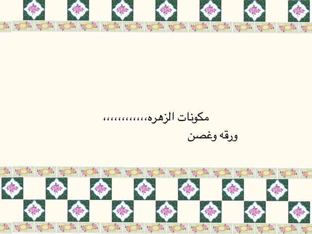 هاوادغزنمفقغس by نواره العبيد