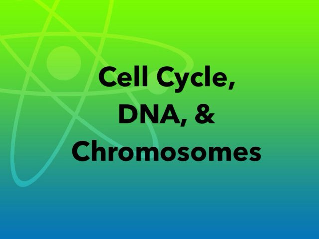 Cell Cycle, DNA, & Chromosomes by Michelle Knight