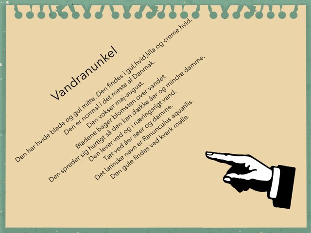 #ntkarlamathildevigo by Elev Skibet