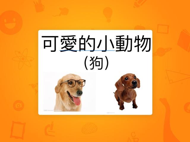 可愛的小動物(狗) by Bell Chung