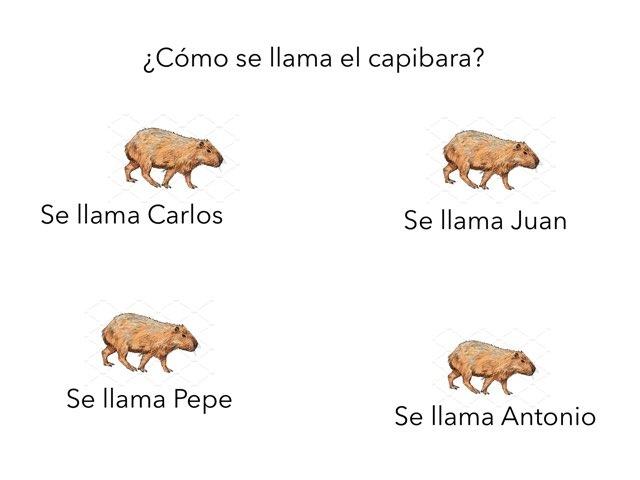 El Capibara Con Botas  by Maria Ruiz-Haneberg