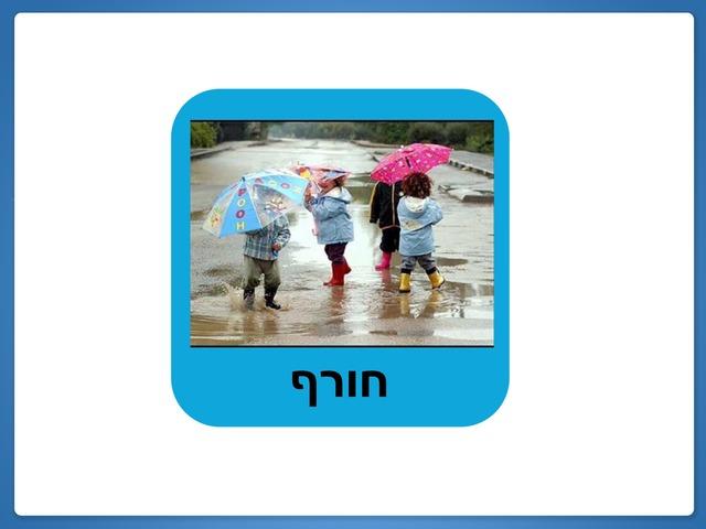 חורף-מעיל by בר ישראלי