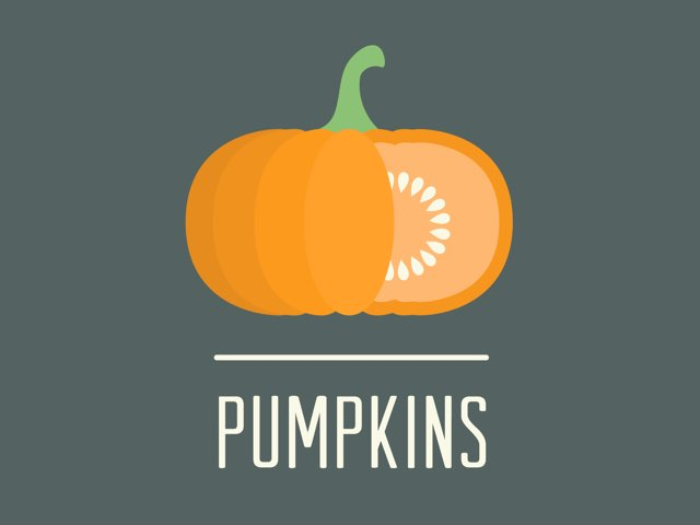 Pumpkins by Melodi Kunn