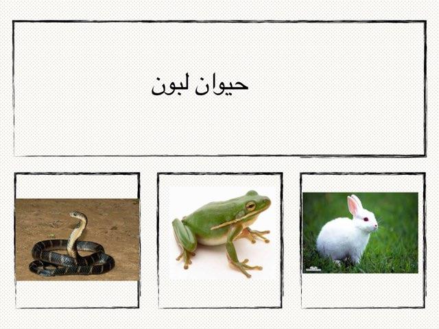 لعبة 21 by ميثه الهاجري