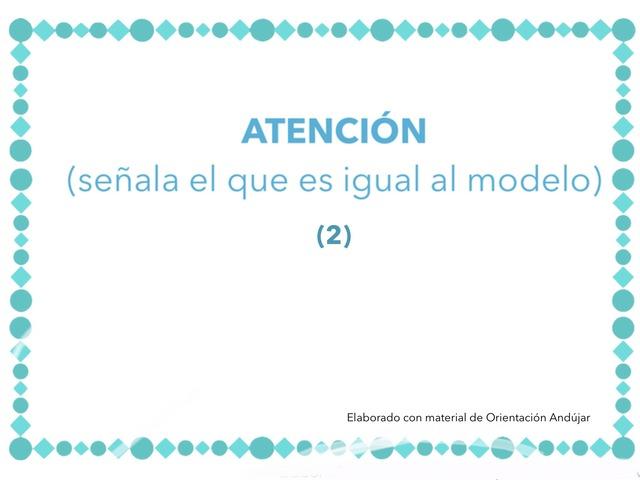 FICHAS DE ATENCIÓN (2) by Zoila Masaveu