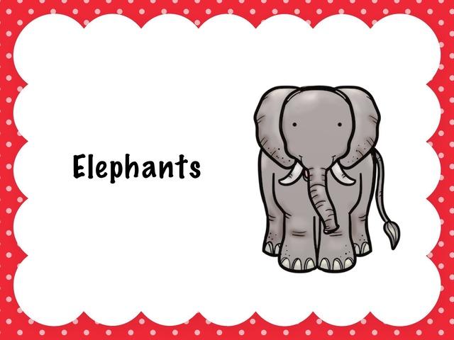 Elephants  by Sam Pelham