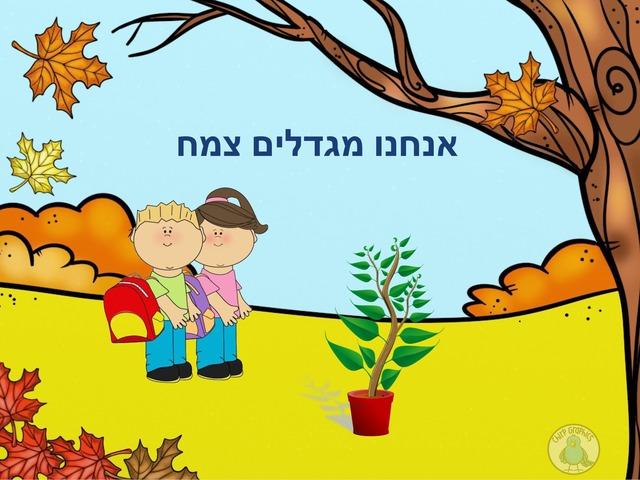 אנחנו מגדלים צמח by mika naaman