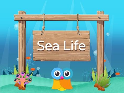 Wikids - Animals: Sea Life (EN UK) by Wikids