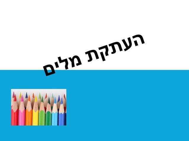סאלד קפה by סאלד בית ספר