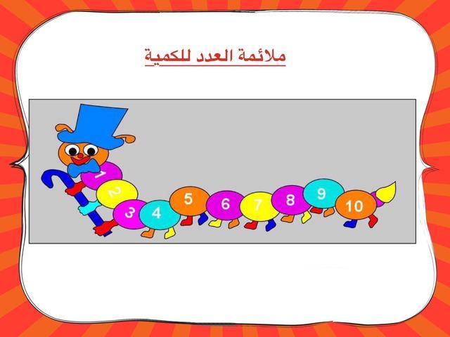 ملائمة العدد للكمية by פידאא אלקרינאוי
