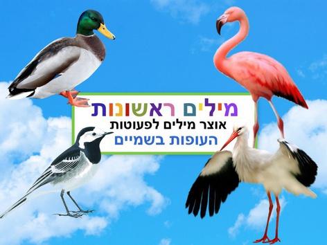 מילים ראשונות העופות בשמיים by Liat Bitton-paz