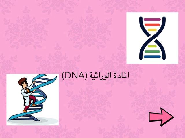 المادة الوراثية DNA by Atheer R
