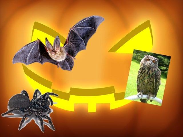 Rijmen Halloween  by Elke Laenen